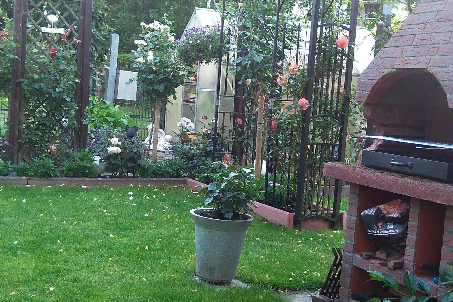 Steme Dienstleistungen Alles Rund Um Haus Und Garten
